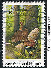 bird in the forest - UNITED STATES - CIRCA 1981: stamp...