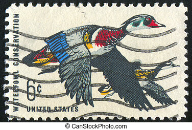 wood ducks - UNITED STATES - CIRCA 1968: stamp printed by...