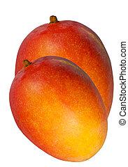 two mangoes - two ripe galypsa mango on white background