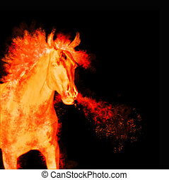 burning running horse isolated on black