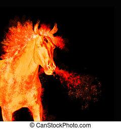 burning running horse isolated on black