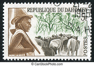 Peuhl Herdsman and Cattle - DAHOMEY CIRCA 1963: stamp...
