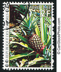 Pineapple - COMORO ISLANDS CIRCA 1977: stamp printed by...