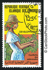 Harvesting crops - COMORO ISLANDS CIRCA 1986: stamp printed...