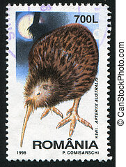 Kiwi - ROMANIA - CIRCA 1998: stamp printed by Romania, shows...
