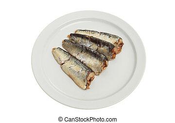 cozinhado, sardinhas