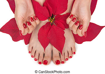 Christmas Spa - Christmas spa with manicured hands and...
