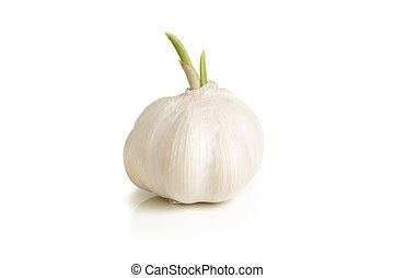 Bulb of garlic on a white background