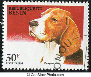 Beagle - BENIN - CIRCA 1995: stamp printed by Benin, shows...