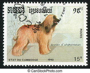 Afghan - CAMBODIA - CIRCA 1990: stamp printed by Cambodia,...