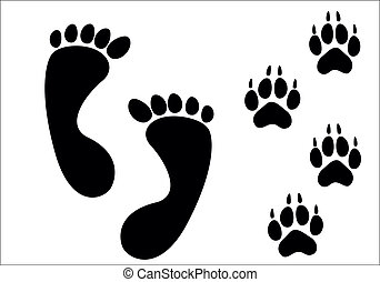 Vector paw prints