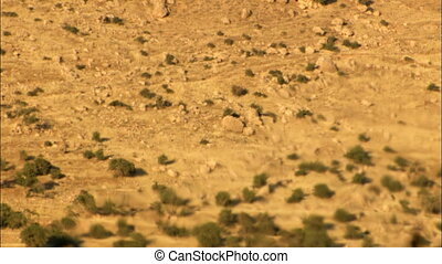 Heat haze - Static shot of heat haze effect in desert. Real...