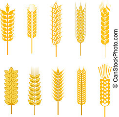 Cereal symbols - Set of cereal symbols for agriculture...
