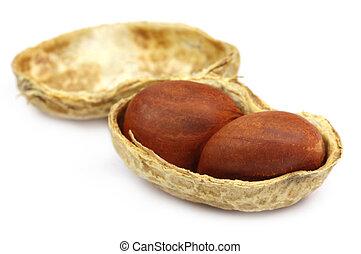 Peeled peanut over white background
