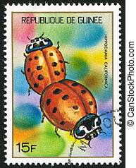 Ladybugs - GUINEA CIRCA 1973: stamp printed by Guinea, shows...