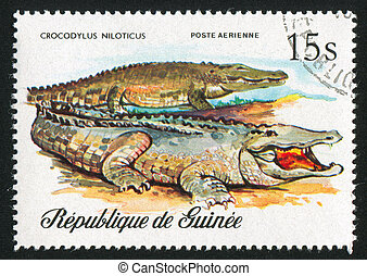 Nile crocodiles - GUINEA CIRCA 1977: stamp printed by...