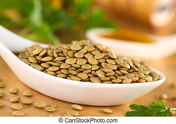 Raw brown lentil seeds with curry powder and cilantro in the...