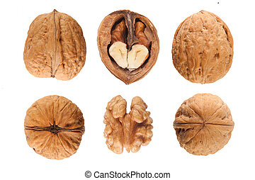 walnuts - six walnuts isolated on the white background