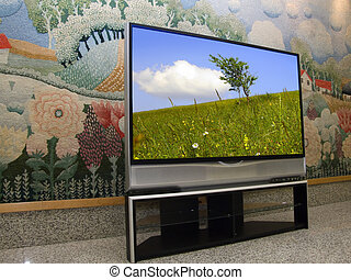 sharp and big - big plasma screen