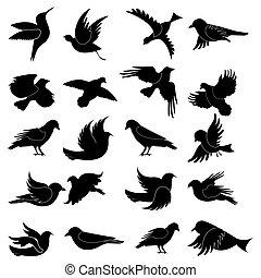 Bird Silhouette - illustration of bird silhouette on...