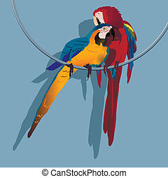 parrot - illustration, two bright parrot on the ring