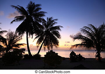 Dream Beach after Sunset at Manihi Atoll in the South Pacific with Coconut Trees