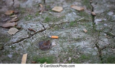 cigarette - disposal of a cigarette out of the garden