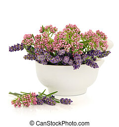 Valerian and Lavender Herb Flowers - Valerian and lavender...