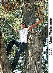Teen on tree - Teen on eucaliptus tree in the park.