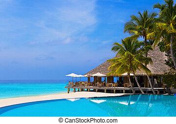 café, piscina, tropical, playa