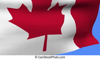 flag of canada on pole fluttering in the wind