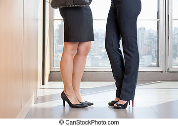 Low Section Of Two Female Executives In High Heels - Low...
