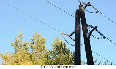 Old power pole, trees and sky background