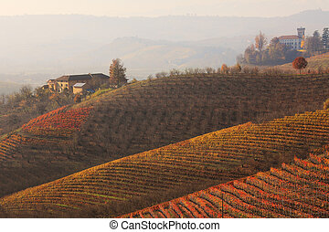 Hills and vineyards at fall. Piedmont, Northern Italy. -...