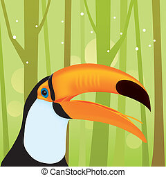Toucan Bird at The Jungle - cartoon illustration of toucan...