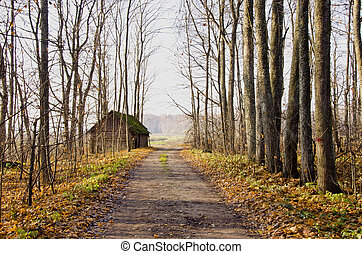 Abandoned house near gravel road and autumn trees. - Old...