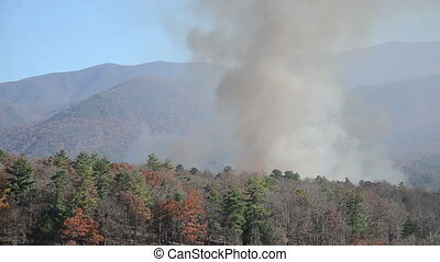 Smoke from a forest fire rising fro - Smoke from a...