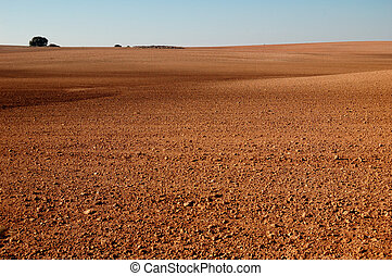 Spanish field in winter - Spanish field in Castilla La...