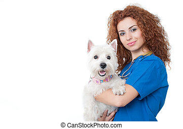 Female vet with dogs - Young female vet caring of a cute dog