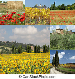 collage with tuscan landscape