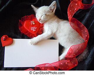 kitten's valentine's card - little kitten sleeping with...