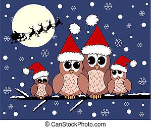 merry christmas - a cute owl family