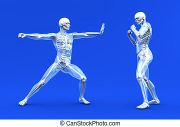 Anatomy - Martial Arts - A medical visualization of human...