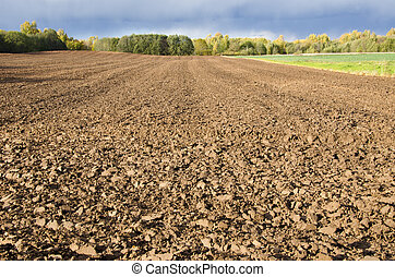 Plowed agricultural field surrounded by forest.