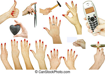 Collection of hand gestures with various concepts isolated on white background