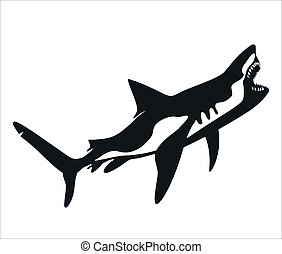 Vector - Shark, tattoo - Predatory shark with an open mouth...
