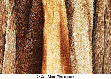 fur coats - various fur coats horizontal background