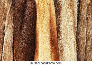 fur coats - various fur coats horizontal background