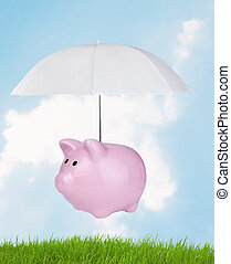 piggy bank flying over green grass against blue sky...