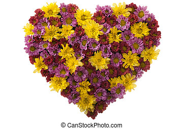 Flower Love - Arrangement of  chrysanthemum in Love Shape
